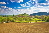 Idyllic Prigorje mountain village of Apatovec — Stock Photo