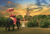 Elephant dressing with thai kingdom tradition accessories standing in front of old pagoda in Ayuthaya world heritage site use for tourism and multipurpose background , backdrop — Zdjęcie stockowe