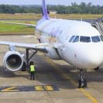 ������, ������: UBONRATCHATHANI THAILAND NOVEMBER21 : thai airways plane parking