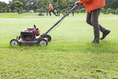 Worker cutting grass field with Lawn mower — Stock Photo