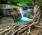 Banyan tree and limestone waterfalls in purity deep forest use n — Stock Photo