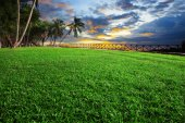 Beautiful landscape of green grass field park against dusky sky — Stock Photo