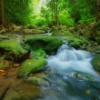 Waterfalls in deep forest ,natural green background — Stock Photo #63111329