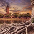 Big root of banyan tree land scape of ancient and old pagoda in — Stock Photo #65047649