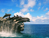 Flock of dolphin jumping through sea water and floating mid air — Stock Photo