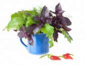 Bouquet of Healthy Greens — ストック写真