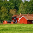 Old red farm houses in rural surroundings — Stock Photo #53636283