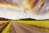Lonely country-road and open fields — Stock Photo