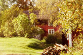Old red farm seen between trees and leaves — Stock Photo