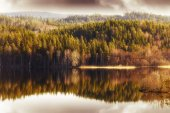 Forest reflection in small lake — Stock Photo