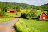 Red farm houses in old rural landscape — Stockfoto