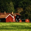 Old rural farm in nature surrounding — Stock Photo #57255707