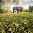 Red cottage, autumn leaves in a rural landscape — Stock Photo #58487231