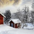 Old rural cottages draped in a snowy winter landscape — Stock Photo #60200763