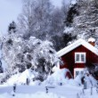 Old rural cottages surrounded by snowy winter scape — Stock Photo #60201239
