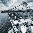 Container port and ship in action — Stock Photo #68666181