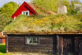 Old thatched roof and cottages, 16th century culture from Sweden — Stock Photo