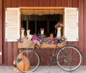 Bicicleta velha clássica — Foto Stock