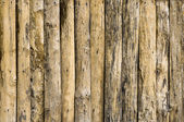 Detail of wood texture decorative — Stock Photo