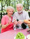 Picnic for Senior Couple — Stock Photo