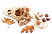 Walnuts in a basket and oak leaves with acorns. — Stock Photo