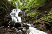 Mountain forest waterfall and creek in the spring. — ストック写真