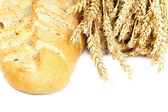 Bread and wheat ears on white background. — ストック写真