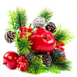 Christmas decoration, fir branch, pine cones, cranberry, apple. — Stock fotografie #58782041