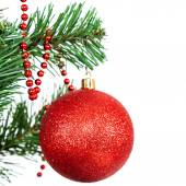 Red ball on the branch of a Christmas tree on white background. — Stock Photo