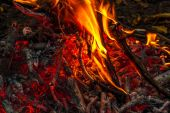 Close up of an outdoor fire burning. — Stock Photo