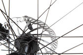 Bicycle wheel with spokes on a white background. — Stock Photo
