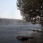 Forest River rapids morning fog at sunrise. — Stock Photo #73041991