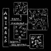 Animals Chalk Infographic — Stok fotoğraf
