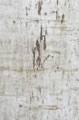 Antique wooden texture — Stock Photo