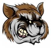 Raccoon mascot character — Stock Vector