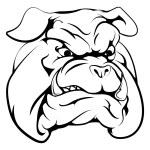 Bulldog mascot character — Stock Vector #77705356