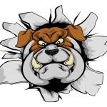 Bulldog mascot smashing out — Stock Vector #82773680