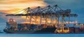 Kap kargo nakliye gemisi — Stok fotoğraf