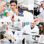People at work in medical lab — Stockfoto