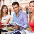 Students studying in park — Stock Photo #54326067
