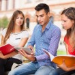 Students studying in park — Stock Photo #54326073