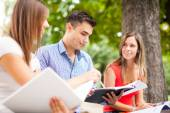 Students studying in park — Stock Photo