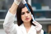 Researcher analyzing test tube — Stock Photo