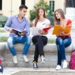 Group of students outdoor — Stock Photo #54389177