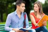 Smiling students studying in park — Stock Photo