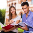 Students studying in a park — Stock Photo #56553715