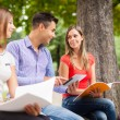 Students studying in a park — Stock Photo #56553755