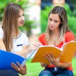 Students studying in a park — Stock Photo #56559067