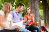 Students studying in a park — Stock Photo