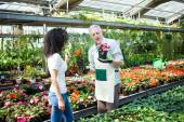 Greenhouse worker talking to customer — Stock Photo